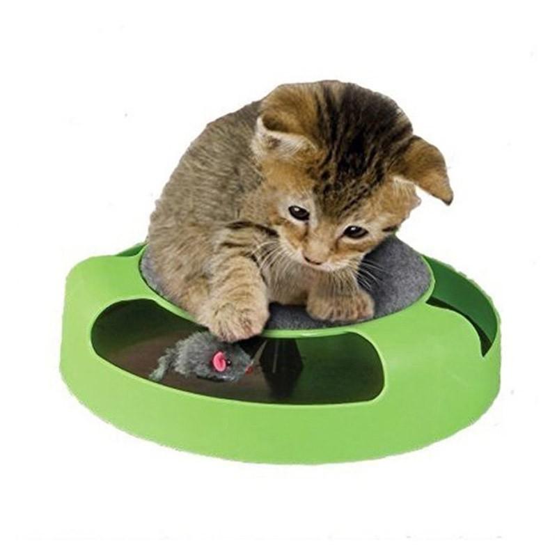 13.9 - Παιχνίδι Κίνησης για Γάτες